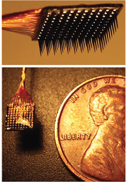 Figure. The Utah microelectrode array close up and next to a penny for comparison. Reproduced with permission from Kelly RC, Smith MA, Samonds JM, et al. Comparison of recordings from microelectrode arrays and single electrodes in the visual cortex. <em>J. Neurosci. 2007;10:261-264</em>.