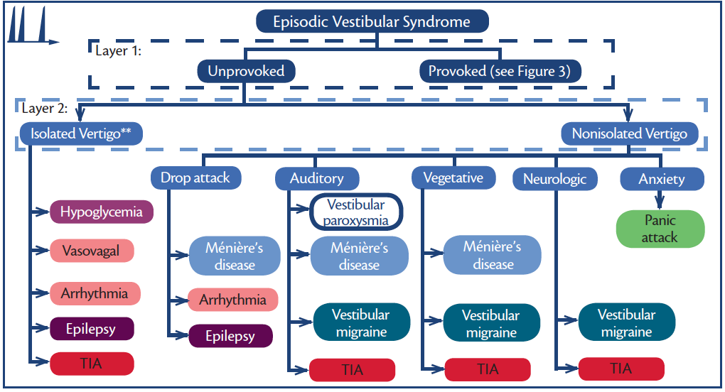 Figure 2. Episodic vestibular syndromes (EVS)—unprovoked. **Each of these disorders may or may not be isolated (eg, aura is common in seizure and diaphoresis in hypoglycemia.) Abbreviation: TIA, transient ischemic attack.