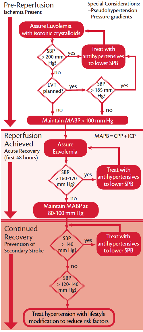 Figure. A management protocol constructed from principles discussed, available evidence, and expert recommendations. Abbreviations: CPP, cerebral perfusion pressure; EVT, endovascular treatment; ICP, intracranial blood pressure; MABP, mean arterial blood pressure; SPB, systolic blood pressure.